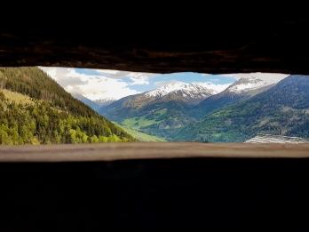 La nature fait partie intégrante du bâtiment © Nadine Wick